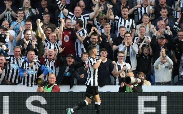 Image for Brazil doesn't believe Newcastle fans should boycott